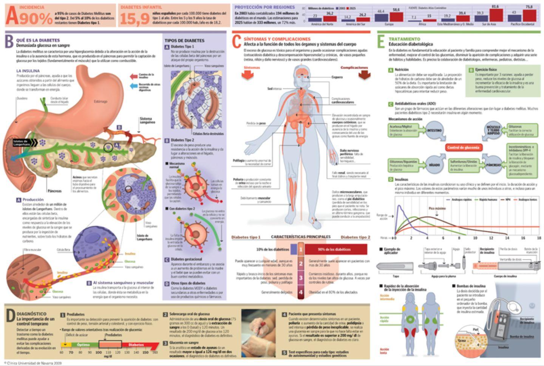 citas de páncreas y diabetes